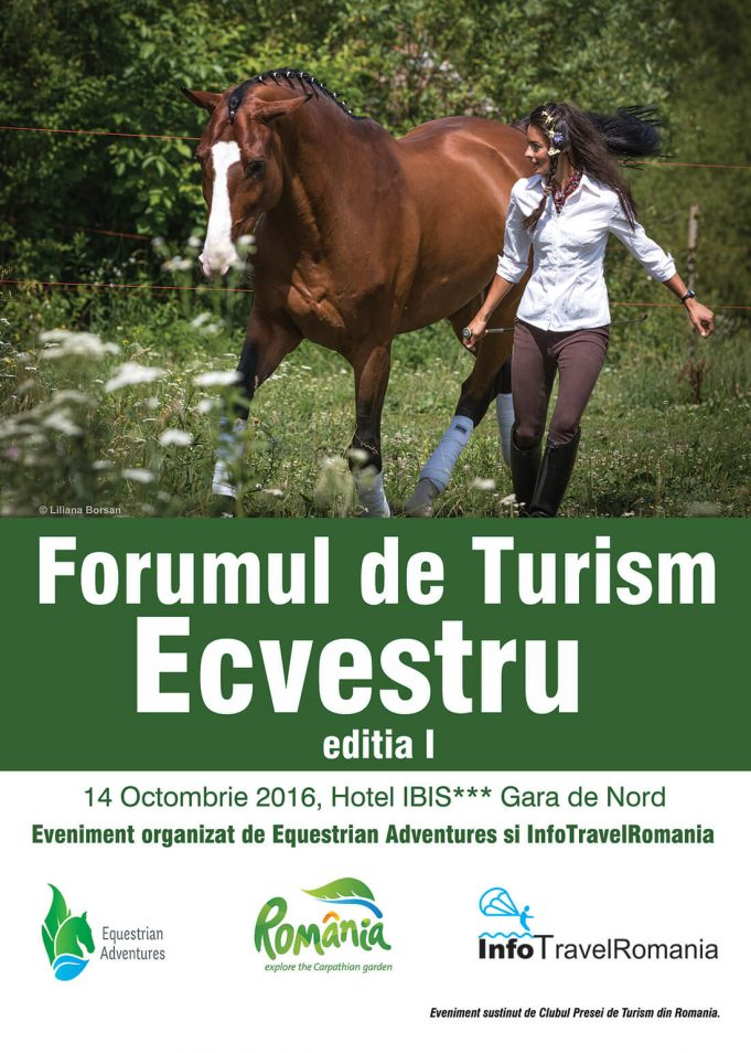 ecvestrianfb-1